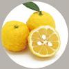 柚子果實萃取